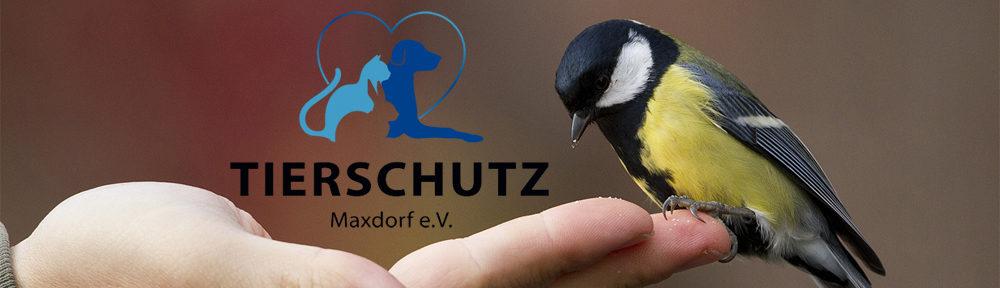 Tierschutz Maxdorf e.V.